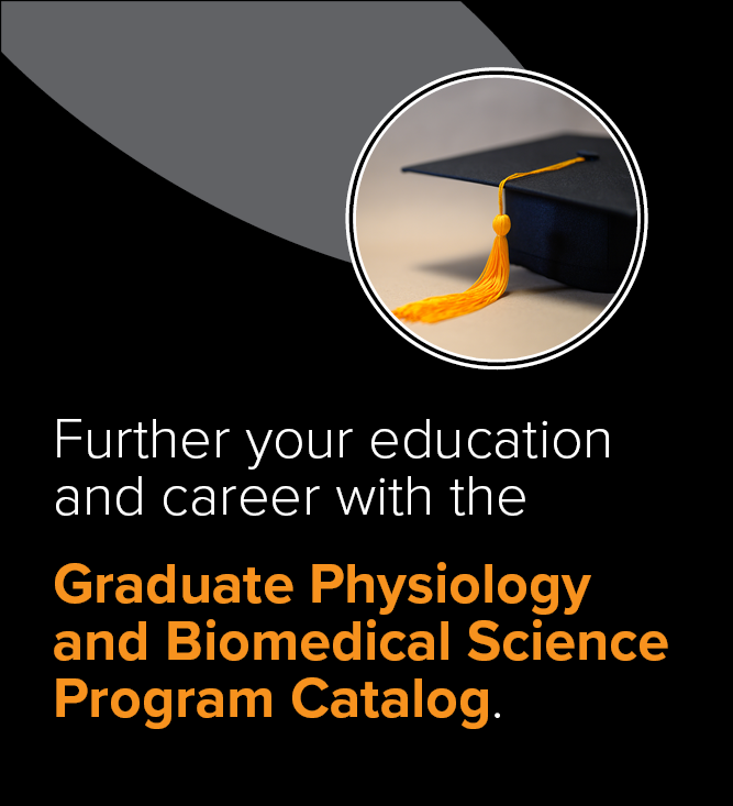 Grad Catalog Website Ad