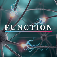 WEBINAR-The Brain as a Whole: Executive Neurons and Sustaining Homeostatic Glia