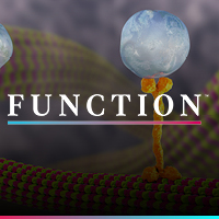 Function Webinar Thumbnail - July 8