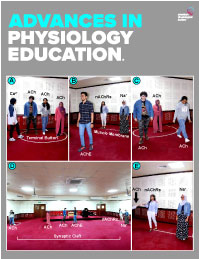 Advances in Physiology Education